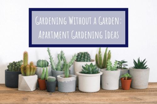 apartment gardening ideas